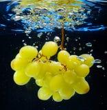 Uva in acqua Fotografia Stock