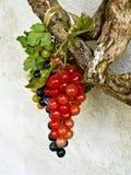 Uva azul e vermelha verde plástica fotografia de stock royalty free