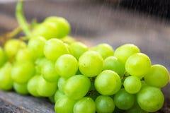 Uva bianca fresca su legno Fotografie Stock