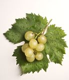Uva con bicchiere di vino Stock Photo