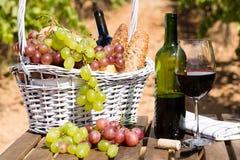 Uva del vino rosso e canestro maturi di picnic sulla tavola in vigna Fotografia Stock Libera da Diritti