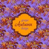 Uva di autunno con le foglie arancio Reticolo senza giunte Etichetta d'annata del testo Fotografia Stock