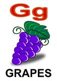 Uva di G della lettera Fotografia Stock