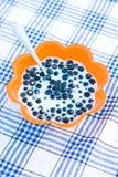 Uva-do-monte com leite Imagem de Stock Royalty Free