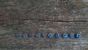 Uva-do-monte fresca Mirtilos recentemente escolhidos foto de stock royalty free