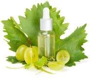 Uva e óleo cortados do grapeseed Imagens de Stock