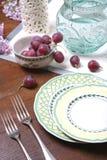 Uva e piatti di ceramica immagine stock libera da diritti