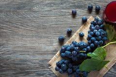 Uva e suco escuros Fotos de Stock
