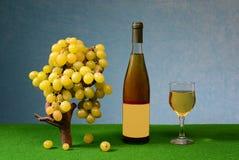 Uva e vino freschi nella bottiglia e nel vetro Immagini Stock