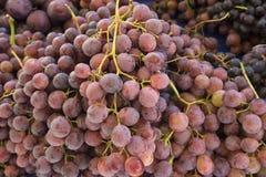 uva Fondo degli acini d'uva Uva un mercato Fotografia Stock