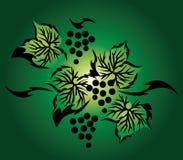 Uva fresca della frutta royalty illustrazione gratis