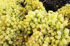 Uva Fundo das uvas para vinho Uvas verdes Uvas um mercado Foto de Stock Royalty Free