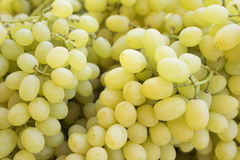 Uva Fundo das uvas para vinho Uvas verdes Uvas um mercado Foto de Stock