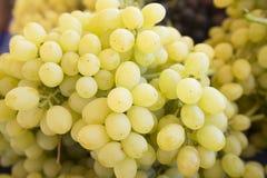Uva Fundo das uvas para vinho Uvas verdes Uvas um mercado Imagem de Stock Royalty Free