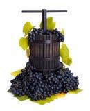 Uva manual tradicional que presiona el utensilio con las uvas azules Fotos de archivo
