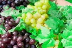 Uva púrpura y verde en cierre del vino para arriba Fotos de archivo libres de regalías