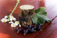Uva passa e margherite sulla tavola Ancora vita 1 Fotografia Stock