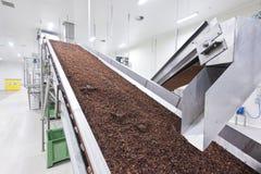 Uva passa nell'imballaggio della fabbrica di produzione dell'uva passa Immagini Stock