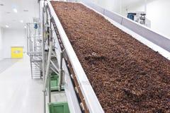 Uva passa nell'imballaggio della fabbrica di produzione dell'uva passa Fotografie Stock Libere da Diritti