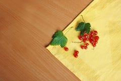 Uva passa su un tovagliolo Immagini Stock Libere da Diritti