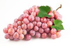 Uva roja con las hojas aisladas en blanco Imagenes de archivo