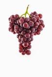 Uva rossa fresca Fotografia Stock Libera da Diritti