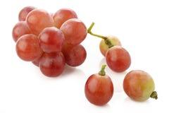 Uva rossa isolata su bianco Fotografia Stock Libera da Diritti
