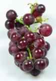 Uva rossa isolata su priorità bassa bianca Immagine Stock Libera da Diritti