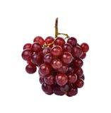 Uva rossa isolata su priorità bassa bianca Fotografie Stock Libere da Diritti