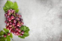 Uva rossa sopra la tavola di pietra Vista superiore con lo spazio della copia fotografia stock