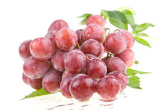 Uva rossa sugosa bagnata Fotografia Stock Libera da Diritti