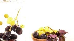 Uva sana fresca della frutta in acqua archivi video