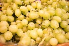 Uva senza semi verde al servizio Immagini Stock
