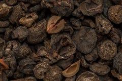 Uva spina indiana secca organica (emblica di Phyllanthus) Fotografia Stock
