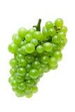 Uva verde Imagens de Stock Royalty Free