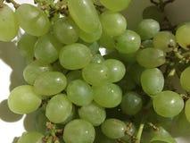 Uva verde Fotografie Stock