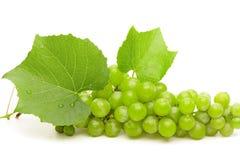 A uva verde com folhas e água deixa cair o close up Fotos de Stock Royalty Free