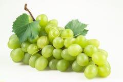 Uva verde con las hojas. Aislado en blanco Imagenes de archivo