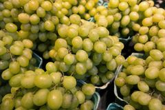 Uva verde fresca Foto de archivo