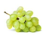 Uva verde fresca Immagini Stock