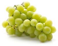 Uva verde isolata su bianco Fotografie Stock Libere da Diritti