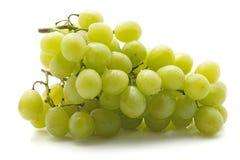 Uva verde isolata su bianco Immagine Stock