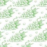 Uva verde senza cuciture royalty illustrazione gratis