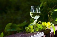 Uva verde y vino blanco Fotografía de archivo