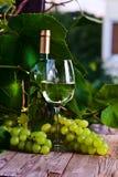 Uva verde y vino blanco Imagenes de archivo