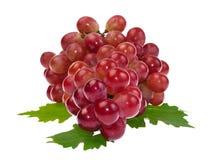 Uva vermelha com a folha isolada no fundo branco Fotografia de Stock