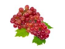 Uva vermelha com a folha isolada no fundo branco Imagem de Stock