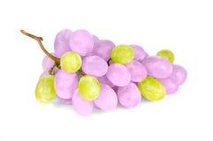 Uva viola e verde Immagini Stock