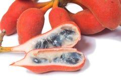 Uvaria rufa布卢姆fruit& x28种子; 水牛奶头 图库摄影
