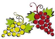 Uvas,   stock de ilustración